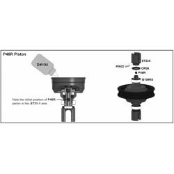 P46R Gummi Kugel Dichtungen - für Kegeldiff GD2B (2 Stück) / P46 Diff Piston (2 Piece)