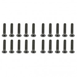 Screws, 3x16 mm FHCS  AE25204